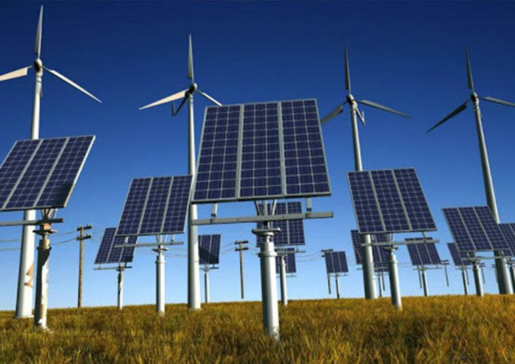 Organizaciones ambientalistas presentaron un plan para que Argentina sea carbono neutral para 2050