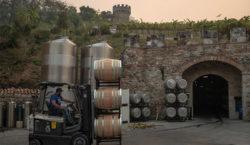 La producción global de vino se redujo en 2020 por…