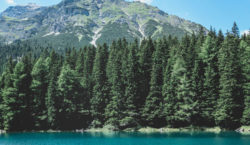 Vacaciones 2021: 5 tipos de viajes que realizarán los argentinos