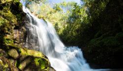 """""""Mesopotamia trip"""": 4 opciones para adentrarse en la Selva Misionera…"""