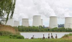 Alemania indemnizará con 2.400 millones de euros a empresas tras…