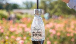 En el Día de la Tierra, SodaStream reafirma su compromiso…