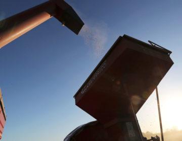 La Justicia rosarina dictó el embargo de US$ 3.100 millones a la cerealera Díaz y Forti y a accionistas