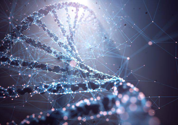 Cuál es la diferencia entre ARN y ADN en las vacunas contra el covid-19