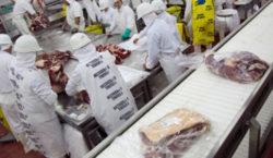 La Aduana impide la exportación de cortes de carne no…