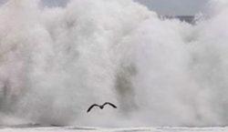 Nueve personas mueren ahogadas por fuertes oleajes en el sur…